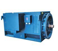 压缩机专用系列高压三相异步电动机