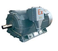 YB2(355-450)中型低速隔爆三相异步电机