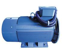 ZYS 系列压缩机专用三相异步电动机