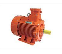 YB3-80~355(IIC)隔爆型三相异步电机